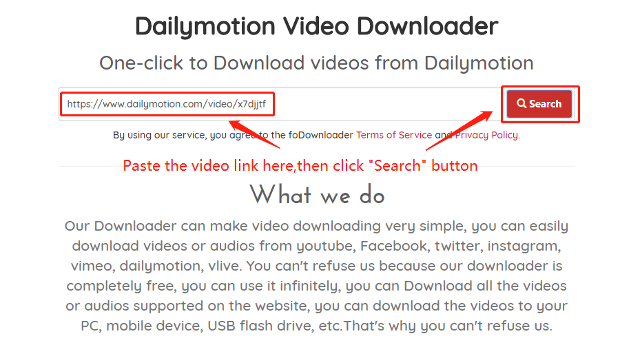 Download the dailymotion Video Wizard, step 2